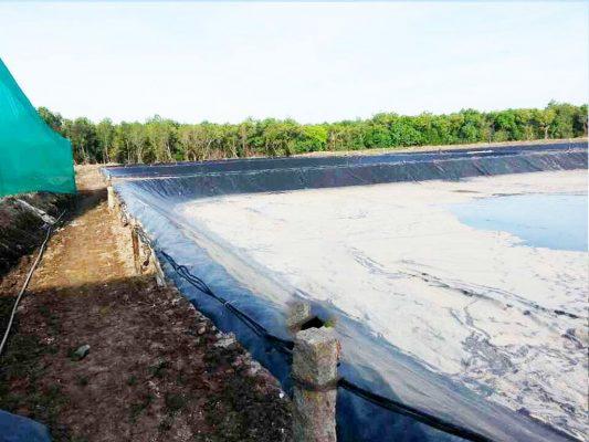 Địa Chỉ Bán Bạt HDPE Lót Ao Hồ Chứa Nước Nuôi Cá Tưới Cây Tại Đắk Lắk