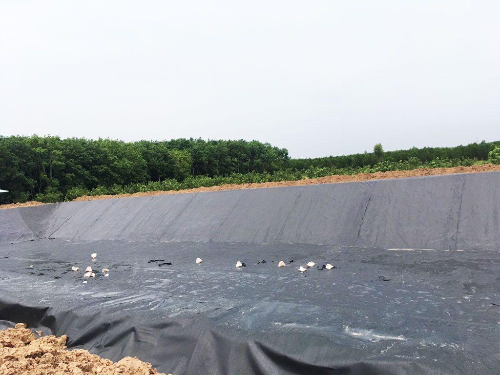 Địa Chỉ Bán Bạt HDPE Lót Ao Hồ Chứa Nước Nuôi Cá Tưới Cây Tại Đắk Nông